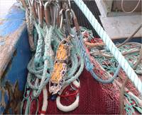 SP2T fishery